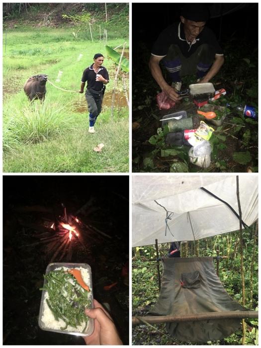 Pic1 - JungleSurvivalCollage